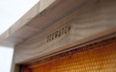 DSC8311 Beewatch brand zoom